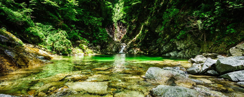 森善虎のドイツ音楽留学ブログ