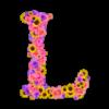 音楽用語〈L,l~〉の意味と対訳【イタリア語・ドイツ語・フランス語・英語と日本語訳