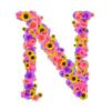 音楽用語〈N,n,O,o~〉の意味と対訳【イタリア語・ドイツ語・フランス語・英語と日本